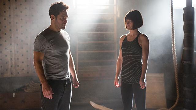 'Ant-Man 2' xuất hiện trong lịch chiếu phim giai đoạn 3 của Marvel