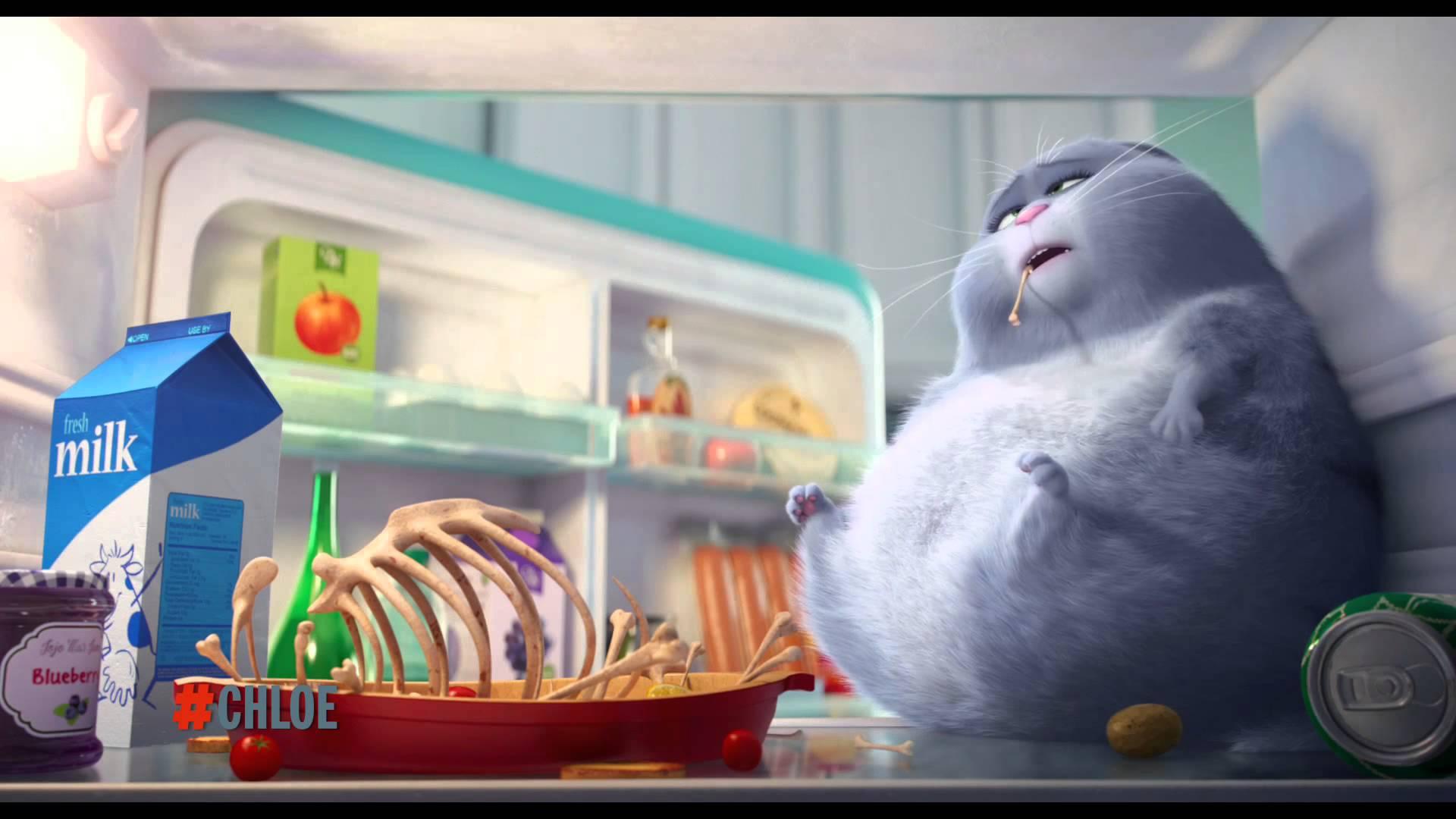 'The Secret Life of Pets' tung trailer chào Giáng Sinh cực yêu