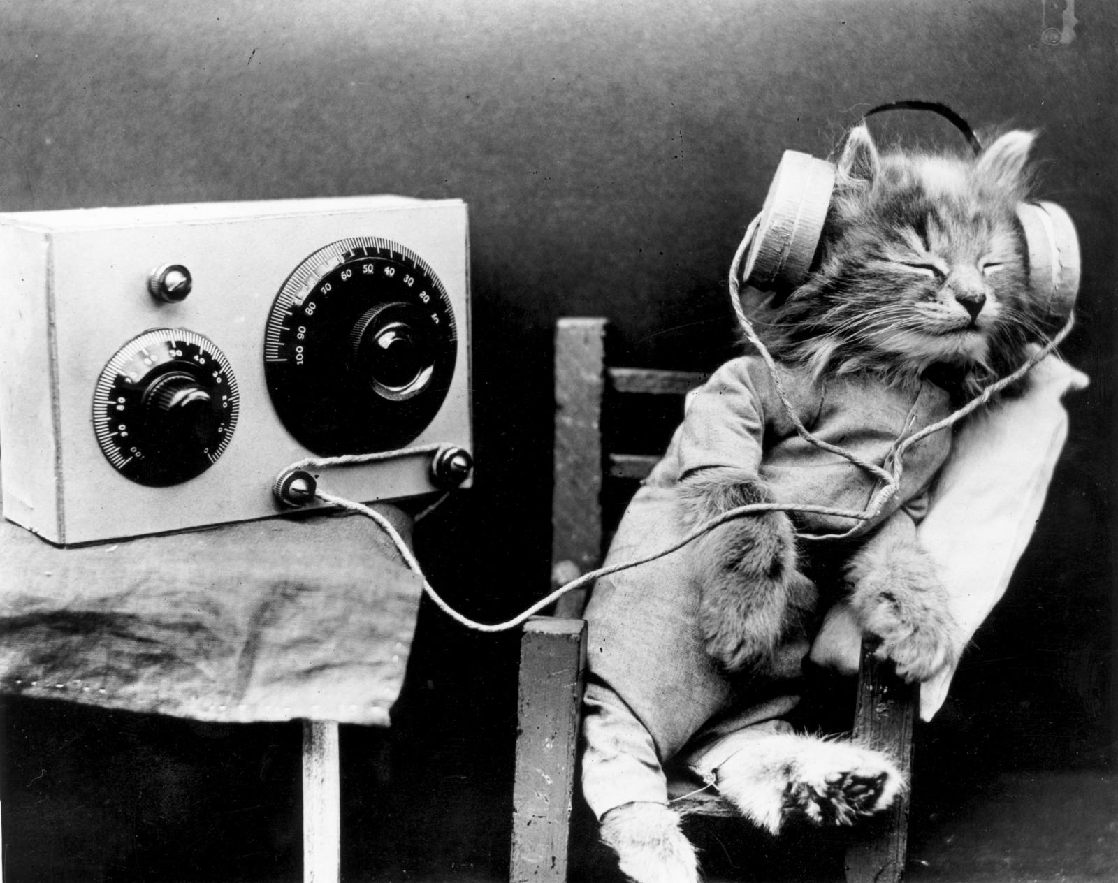 5 lợi ích từ việc nghe những bài hát có ý nghĩa tích cực