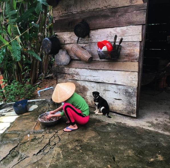 Đoàn làm phim Kong thích thú ghi lại hình ảnh Việt Nam đẹp lạ