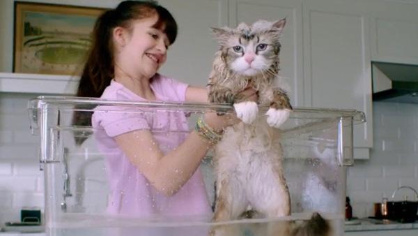 """Hài hước, thú vị cùng trailer mới của """"Bố Tôi Là Mèo"""""""