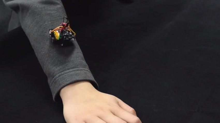Thích thú với robot siêu nhỏ bò trên quần áo người