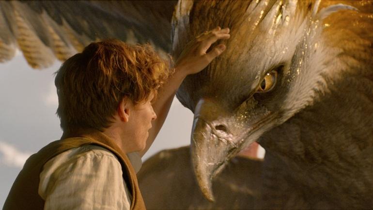 Fantastic Beasts and Where to Find Them: Viết lại tuổi thơ qua thế giới phép thuật mới