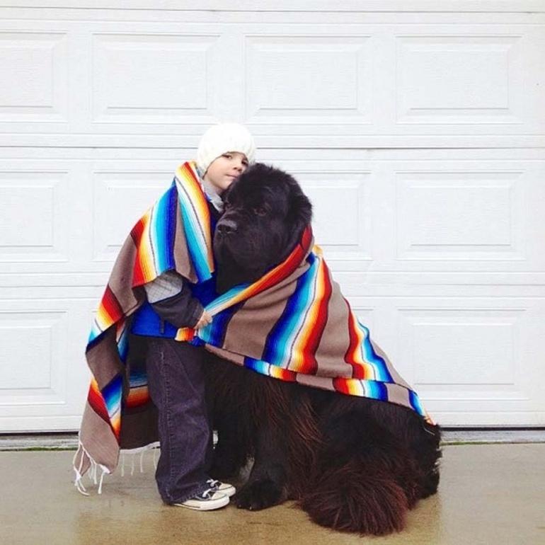 Người yêu không có nhưng chó phải có 1 con