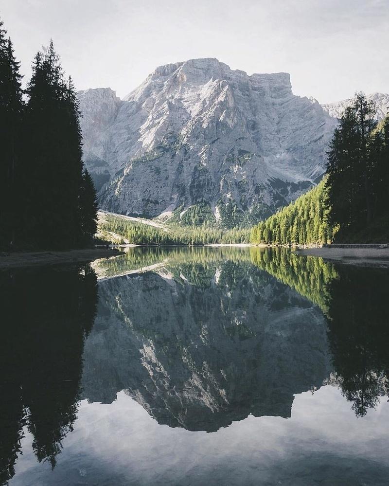Thế giới đẹp thế này bạn có ngăn mình chọn #teamđi được không?