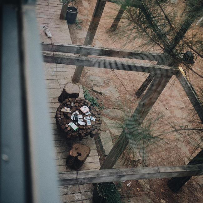 Tròn mắt trước căn biệt thự như bước ra từ phim Twilight ngay gần Hà Nội