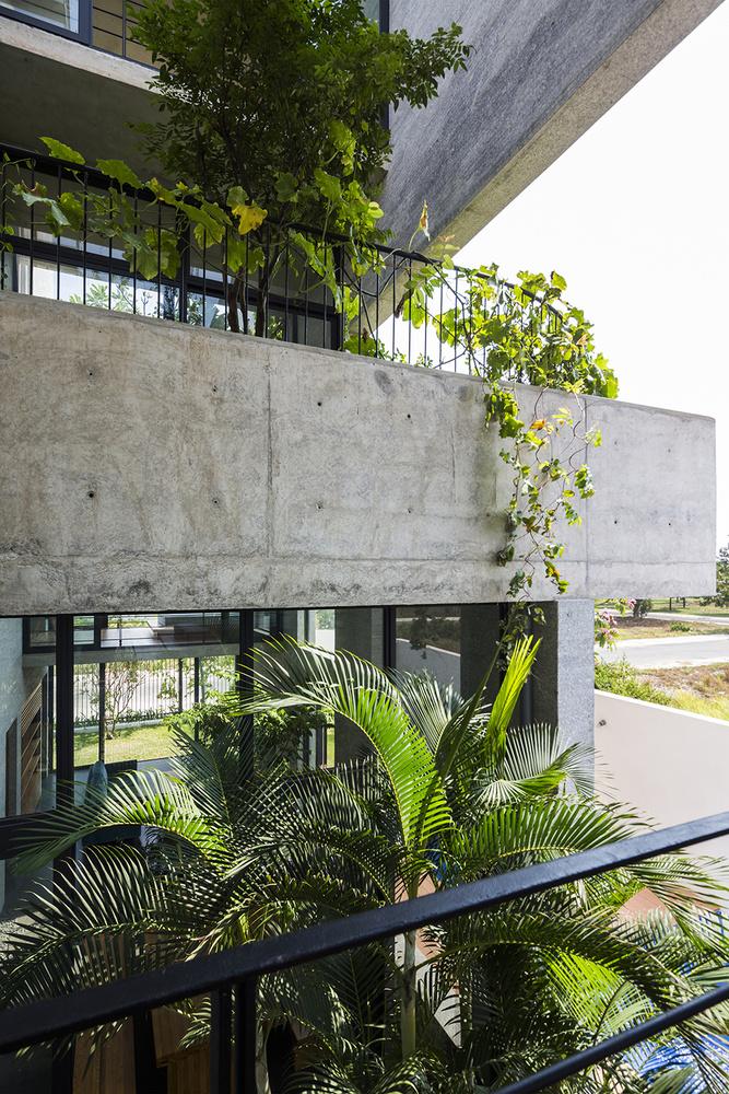 Binh House: Nhà vườn hiện đại giữa lòng Sài Gòn