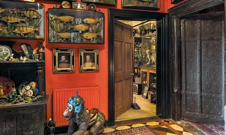 """Bảo tàng quái dị ở Anh công bố """"của quý"""" khổng lồ trị giá 3 tỷ VNĐ."""