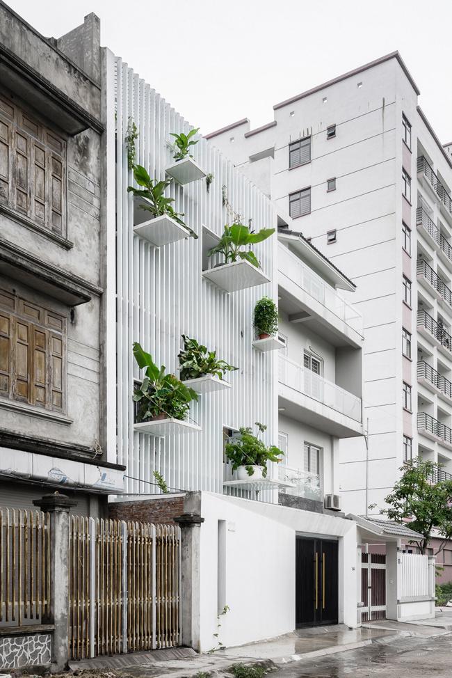 """Ban công """"lồng cây xanh"""" – giải pháp tuyệt vời cho nhà đô thị"""